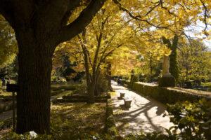 jardín Botánico_otoño